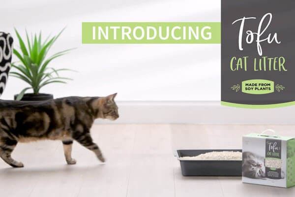 Want to learn more about Tofu Cat Litter?